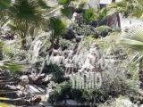 Photo of property SI0691, 1 de 44