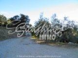 Foto der Immobilie SI0025, 26 de 26