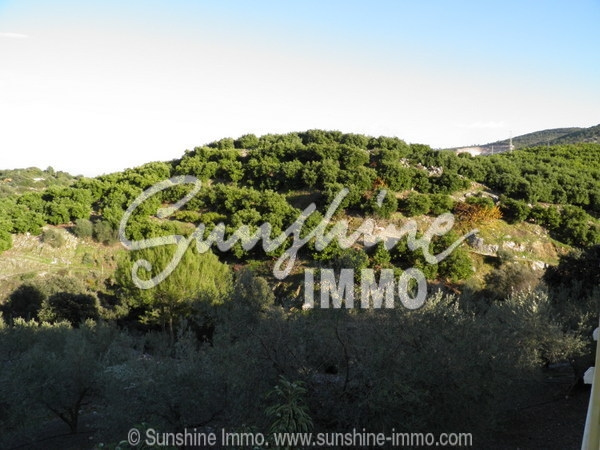 Photo of property SI0025, 5 de 26