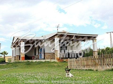 ALQUILER LARGA TEMPORADA DESDE SEPTIEMBRE 2019. Encantadora casa de campo totalmente amueblada en Coín con una vista muy agradable e idílicas del rio. A tan solo 4 km de la carretera principal.
