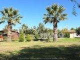 Foto der Immobilie SI1087, 2 de 26