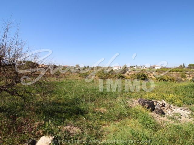 Photo of property SI1046, 3 de 15