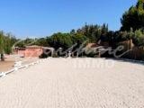 Photo of property SI1073, 3 de 36