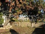 Foto de la propiedad SI1120, 14 de 40