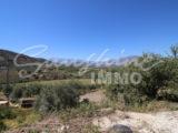 Photo of property SI1148, 5 de 28
