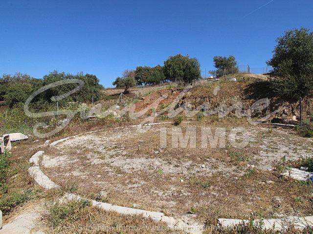 Photo of property SI1148, 25 de 28