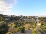 Photo of property SI1149, 5 de 23