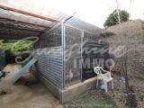 Foto der Immobilie SI1149, 22 de 23