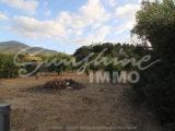 Photo of property SI1149, 23 de 23