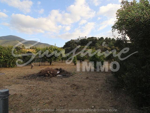 Foto der Immobilie SI1149, 23 de 23