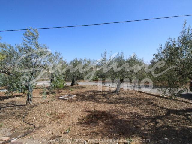 Photo of property SI1153, 2 de 21