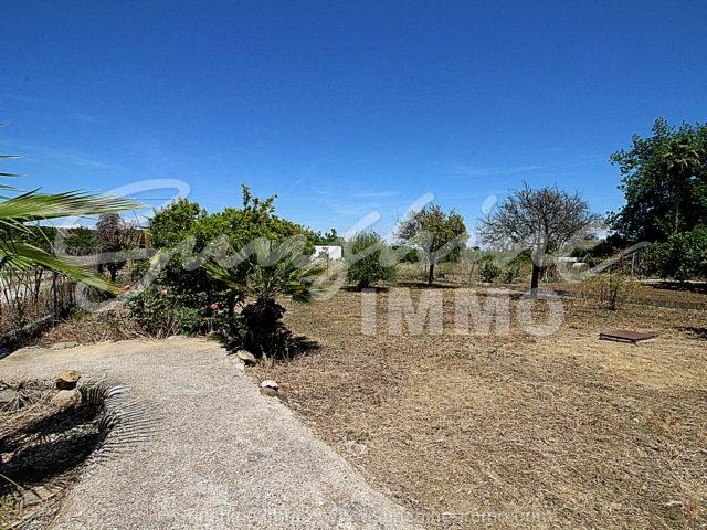 Photo of property SI1177, 20 de 20