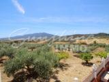 Photo of property SI1178, 5 de 38
