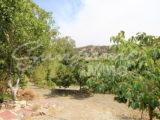 Photo of property SI1235, 20 de 21
