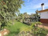 Photo of property SI1255, 21 de 26