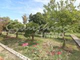 Photo of property SI1255, 19 de 26