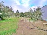 Photo of property SI1285, 3 de 20