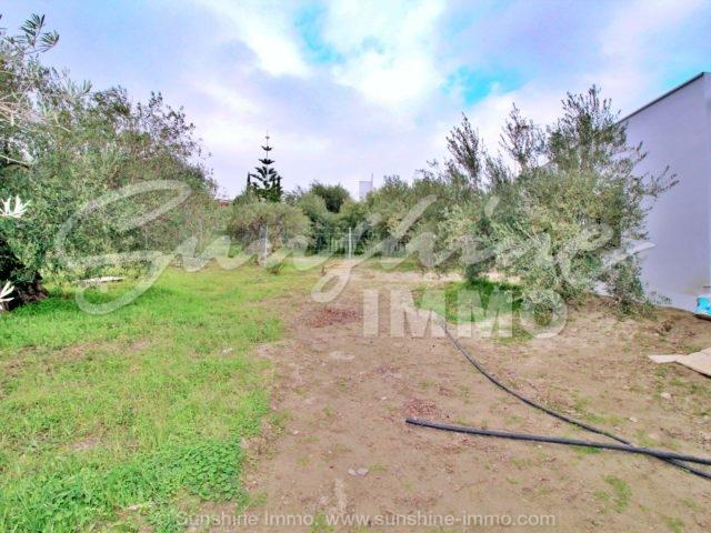 Photo of property SI1285, 4 de 20