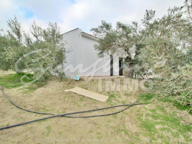 Photo of property SI1285, 20 de 20