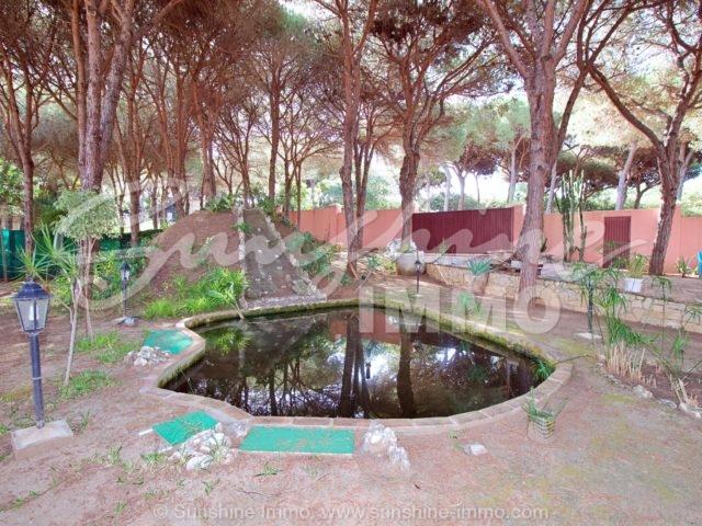 Photo of property SI1333, 3 de 46