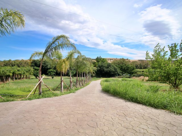 Photo of property SI1341, 9 de 32