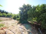 Photo of property SI1343, 5 de 20