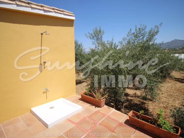 Photo of property SI1350, 7 de 23