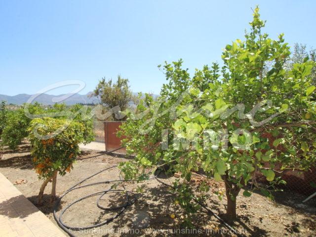Photo of property SI1350, 24 de 23