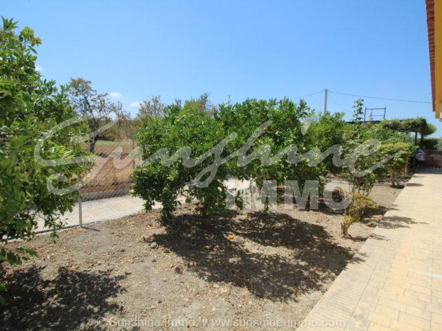 Photo of property SI1350, 23 de 23