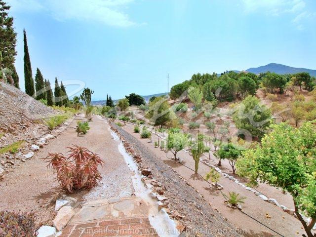 Photo of property SI1352, 8 de 37