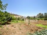 Photo of property SI1353, 17 de 31