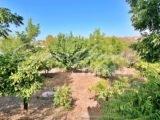 Photo of property SI1357, 7 de 25