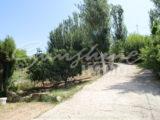 Photo of property SI1358, 7 de 21