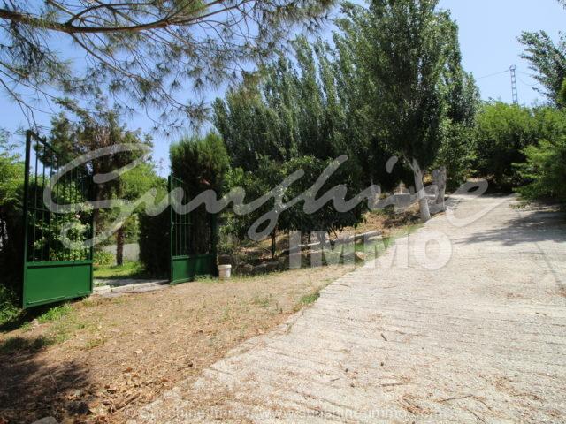 Photo of property SI1358, 8 de 21