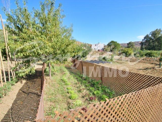 Photo of property SI1353, 24 de 31