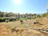 Photo of property SI1353, 26 de 31