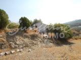 Photo of property SI1391, 33 de 33