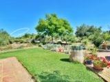Photo of property SI1390, 3 de 28