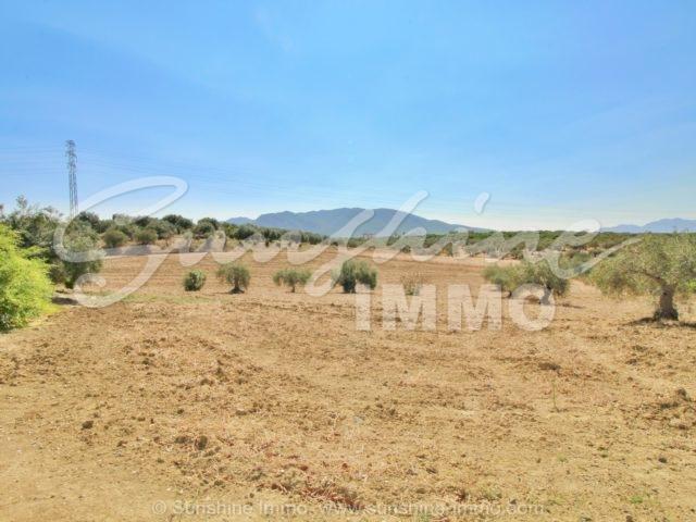 Photo of property SI1390, 26 de 28