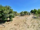 Photo of property SI1390, 27 de 28