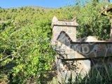 Photo of property SI1405, 22 de 26