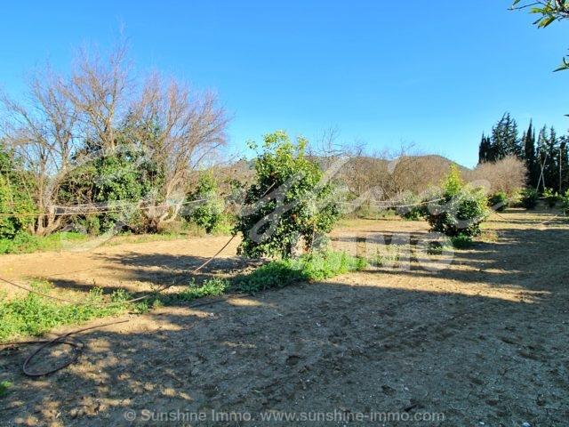 Photo of property SI1450, 9 de 51