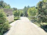 Photo of property SI1469, 56 de 77