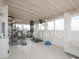 Foto der Immobilie SI1499, 39 de 42