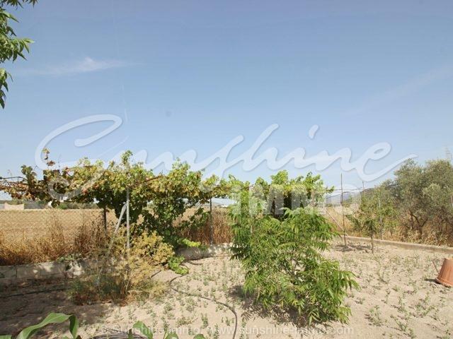 Foto der Immobilie SI1508, 51 de 54