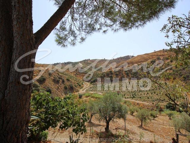 Photo of property SI1526, 10 de 28