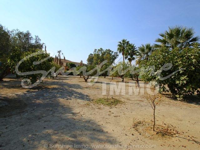 Photo of property SI1535, 28 de 34