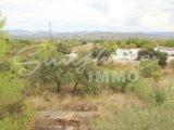 Photo of property SI1541, 33 de 35