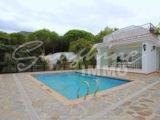 Photo of property SI1540, 9 de 72